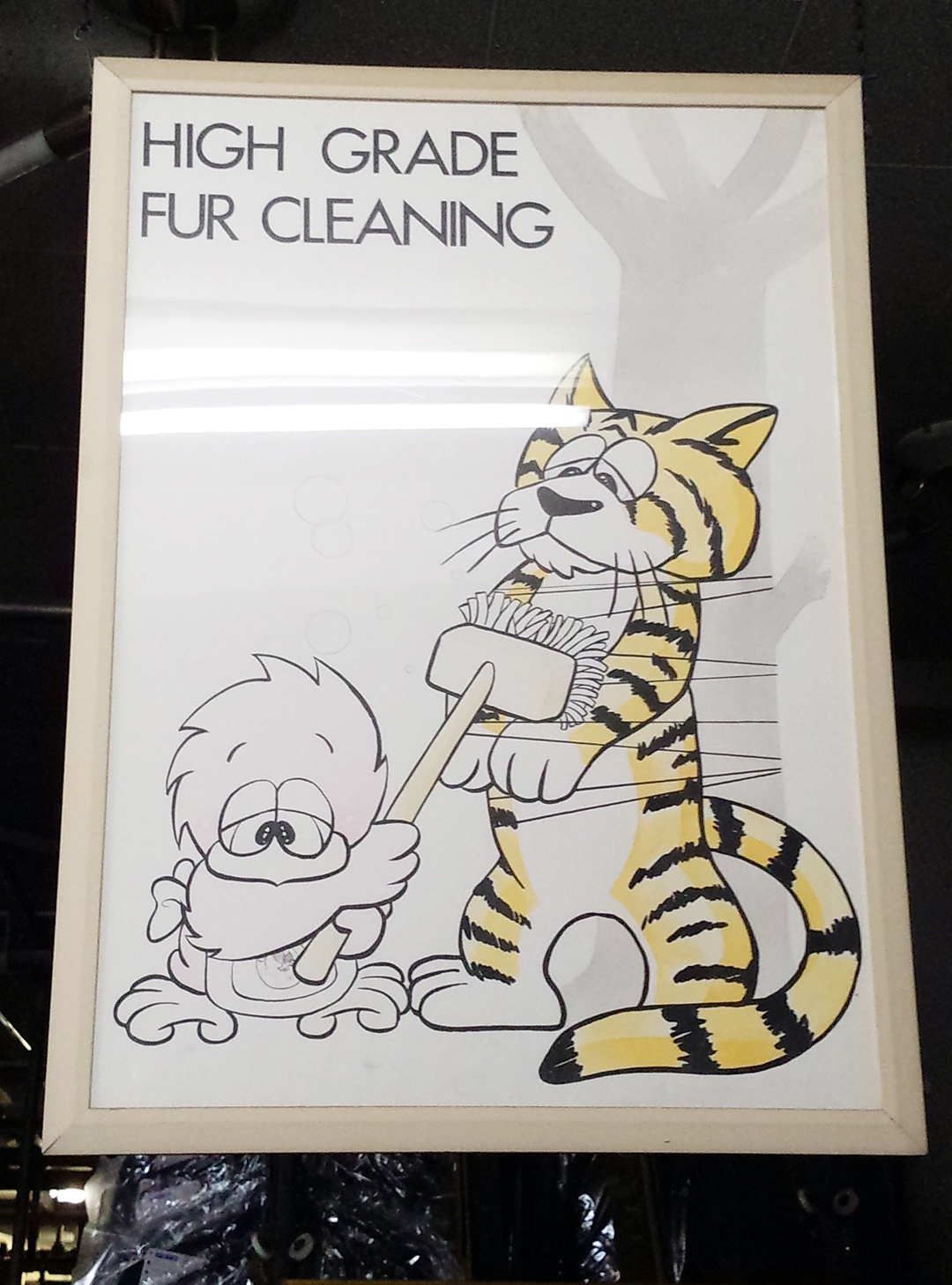 Reddy-Fur-Cleaning